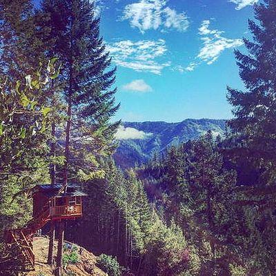 Forest Rte 17n08, Gasquet, CA 95543