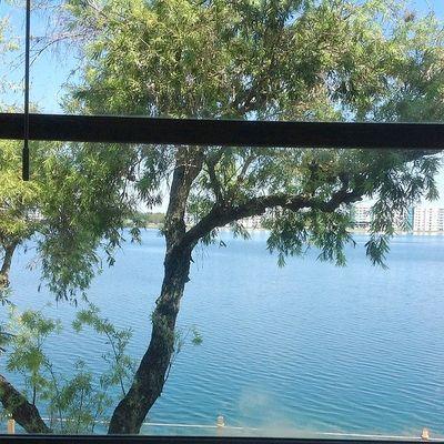 117 Lake Emerald Dr #205, Oakland Park, FL 33309