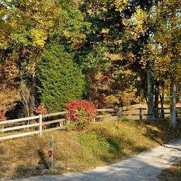 929 Scrubgrass, Danville, KY 40423
