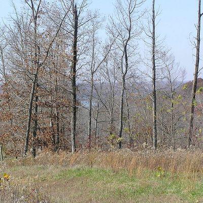 Lot 62, Roberts Rd   Eagles Ridge Subdivision, Cadiz, KY 42211