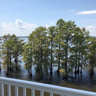 420 Captains Cove Unit F, Edenton, NC 27932