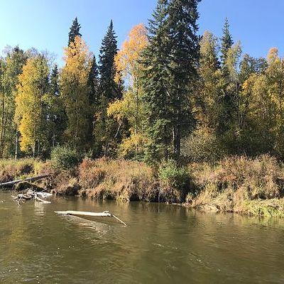 Chena River, Fairbanks, AK 99705