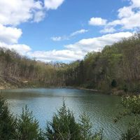1231 Rockhouse Trace Road (Land), Louisa, KY 41230