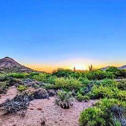1408 Austin St